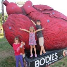 kids heart