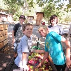 apples-boys2