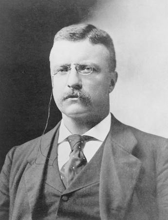 Homeschooled Teddy Roosevelt Never Sat in a Classroom UntilHarvard